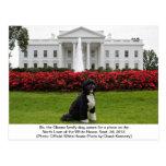 BO, die Obama-Familienhundpostkarte