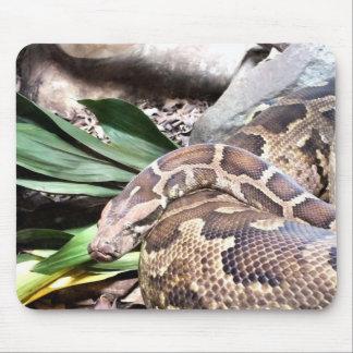Boa constrictor mauspad