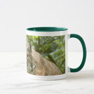 Bobcat-Tassen Tasse