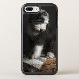 Bobtail Welpenporträt im Studio OtterBox Symmetry iPhone 8 Plus/7 Plus Hülle