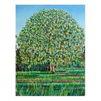 Bogen-Baum-Frühling Postkarte