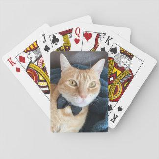 Bogen-Krawattenkatze Spielkarten