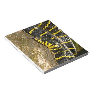 Boiga dendrophila oder Mangrovenschlange Notizblock