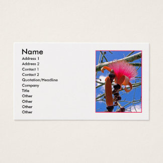Bombax-Blüte Visitenkarte