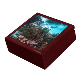 Bonairean Riff Geschenkbox