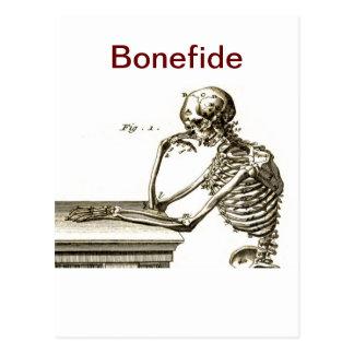 Bonefide Skelett Postkarte