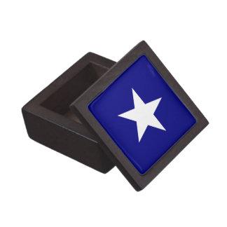 Bonnie-blauer Sumpf-Schwertlilie-weißer Stern Kiste