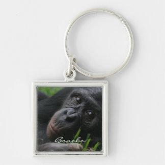 Bonobo Schlüsselbänder
