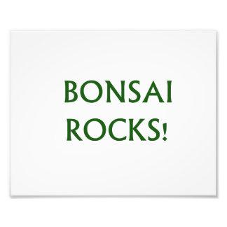 Bonsai schaukelt das Slogan-Sprichwort, das im grü Foto