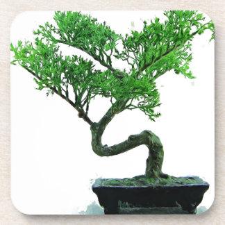Bonsaibaum Malerei Untersetzer
