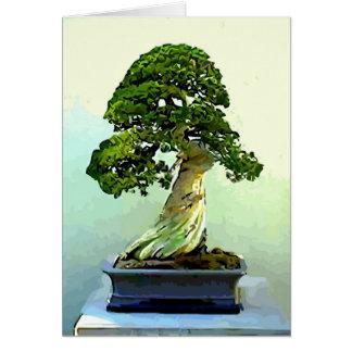 Bonsais-Zypresse-Baum Karte