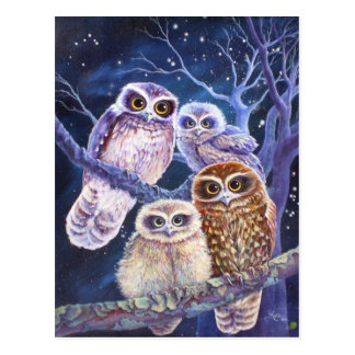 Boobook Eulen-Familie Postkarte