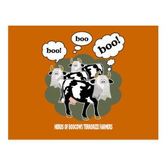 BooCows BCXA Postkarte
