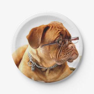 BordeauxMastiff, französisches Mastiff Bordeauxdog Pappteller