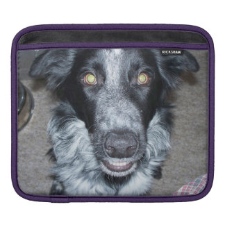 Border-Collie 2.png iPad Sleeve