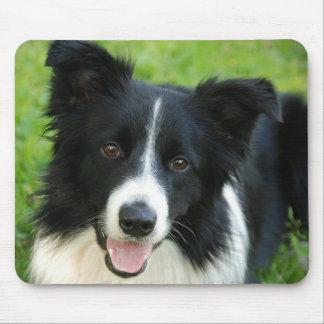 Border-Collie-Hund addieren Text-Haustier Mousepad