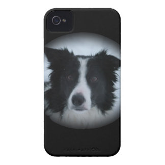 Border-Collie iPhone 4 Case-Mate Hülle