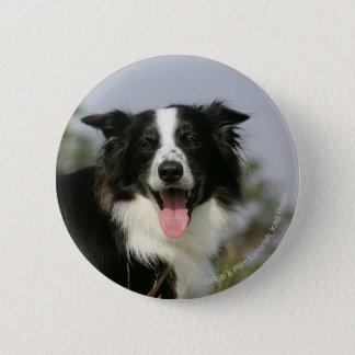 Border-Collie-KeuchenHeadshot 1 Runder Button 5,7 Cm