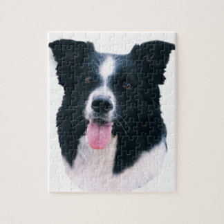 Border-Collie-Porträt Puzzle