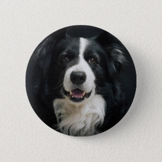 Border-Collie Runder Button 5,1 Cm