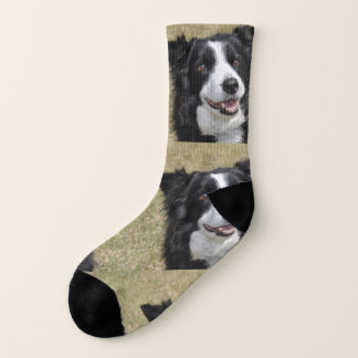 Border-Collie Socken
