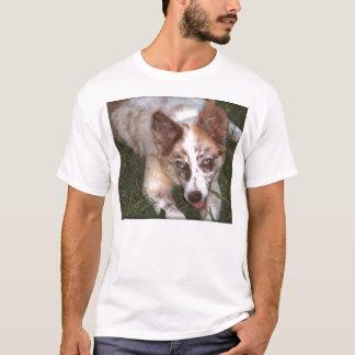 Border-Collie Tee~Chocolate Merle T-Shirt