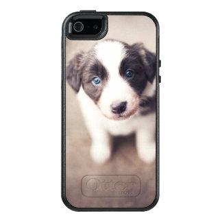 Border-Collie-Welpe mit blauen Augen OtterBox iPhone 5/5s/SE Hülle