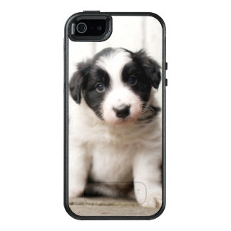 Border-Collie-Welpe OtterBox iPhone 5/5s/SE Hülle