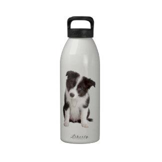 Border-Collie-Welpe Wiederverwendbare Wasserflasche