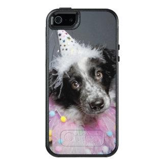 Border-Collie-Welpen-tragender Hut OtterBox iPhone 5/5s/SE Hülle