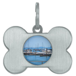 Boston-Hafen-Boots-Segel-SailBoats Seeansichten Tiermarke