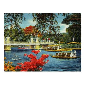 Boston-Schwan-Boote Postkarte