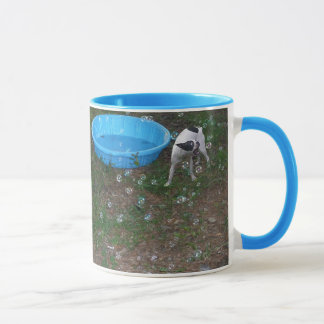 Boston-Terrier, der Blasen Tasse isst