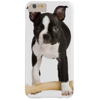 Boston-Terrier, der twisty Knochen schützt Barely There iPhone 6 Plus Hülle