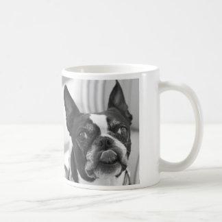 Boston-Terrier-Foto auf kundenspezifischer Kaffeetasse