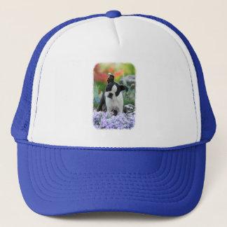Boston-Terrier-Hundeniedliches Welpen-Porträt-Foto Truckerkappe