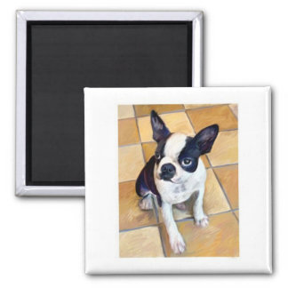 Boston Terrier Quadratischer Magnet