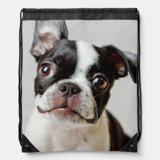 Boston Terrier Turnbeutel