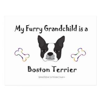 BostonTerrier Postkarte