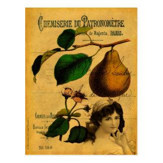 Botanische Frucht Postkarte