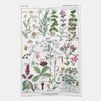 Botanische Illustrationen Geschirrtuch
