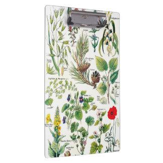 Botanische Illustrationen - Larousse Pflanzen Klemmbrett