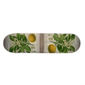 botanische Kunstorange des modernen Vintagen 19,7 Cm Skateboard Deck