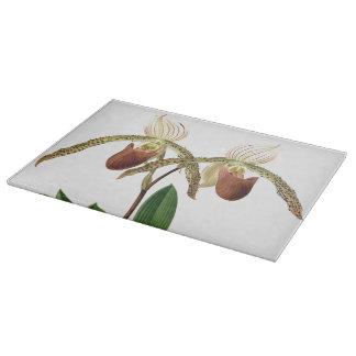 Botanische Ladys Pantoffel-Orchideen-Blumen mit Schneidebrett