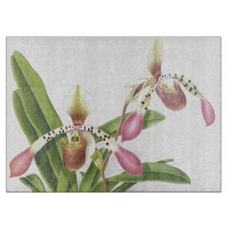 Botanische tropische Orchideen-Blumen mit Blumen Schneidebrett