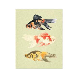 Botanisches Fisch-Trio Leinwanddruck