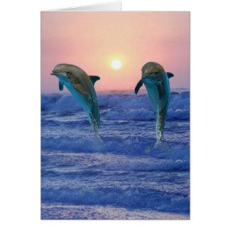 Bottlenose-Delphin am Sonnenaufgang Karte