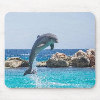 Bottlenose-Delphin Mousepad