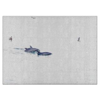 Bottlenose-Delphin-Tier-Tier-Ozean Schneidebrett