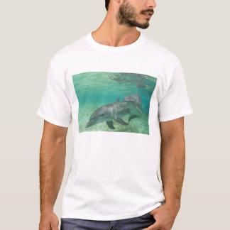 Bottlenose-DelphineTursiops truncatus) 25 T-Shirt